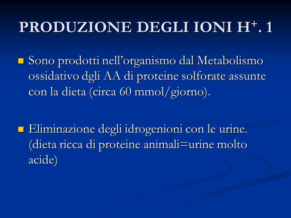 PRODUZIONE DEGLI IONI H+. 1