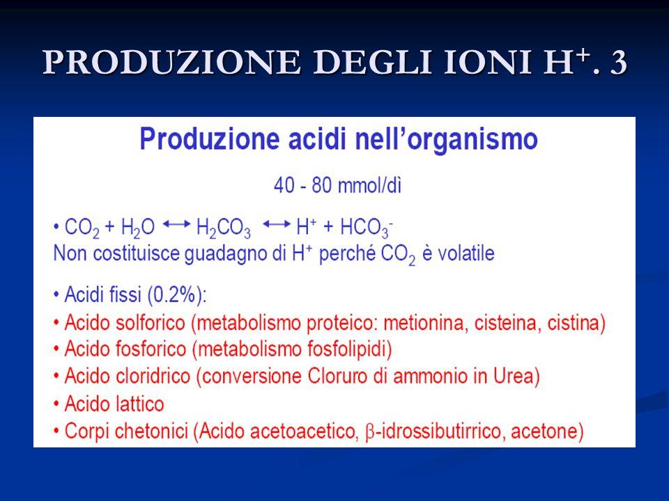 PRODUZIONE DEGLI IONI H+. 3