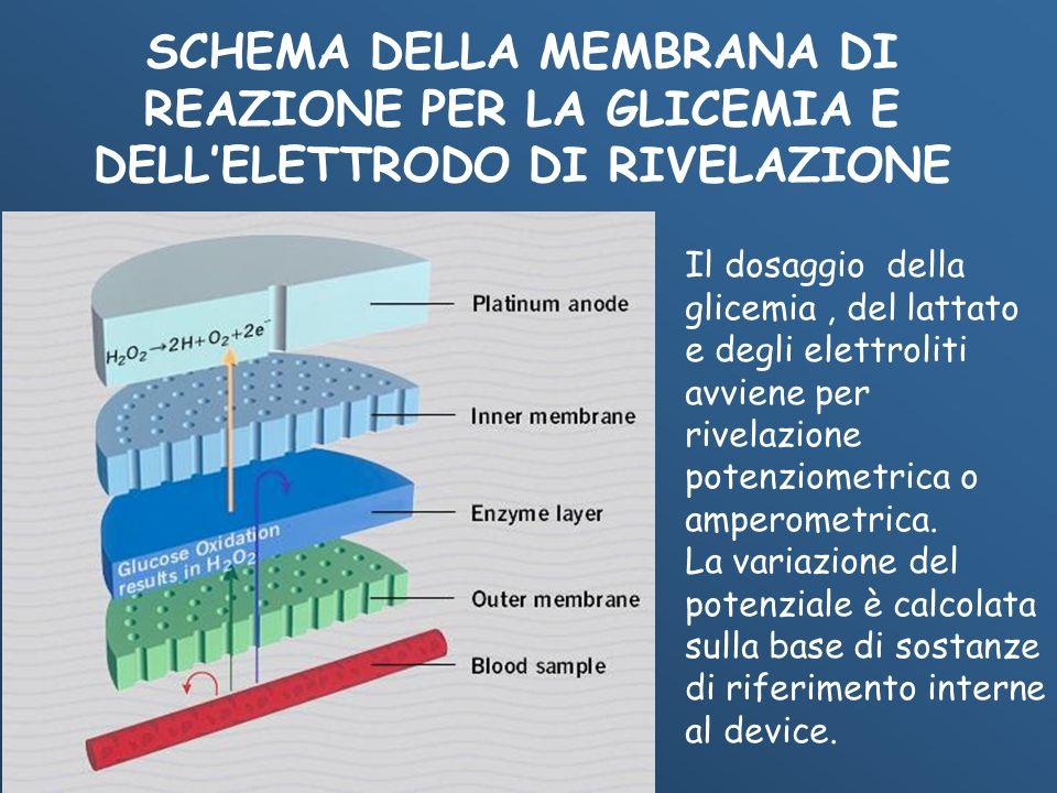SCHEMA DELLA MEMBRANA DI REAZIONE PER LA GLICEMIA E DELL'ELETTRODO DI RIVELAZIONE