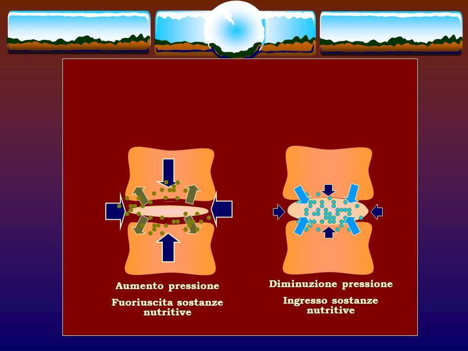 Fuoriuscita sostanze nutritive Diminuzione pressione