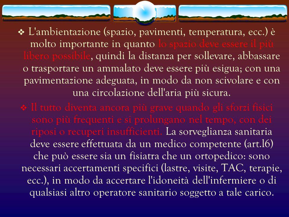 L ambientazione (spazio, pavimenti, temperatura, ecc