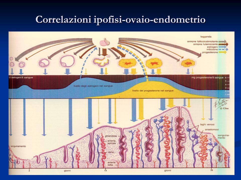Correlazioni ipofisi-ovaio-endometrio