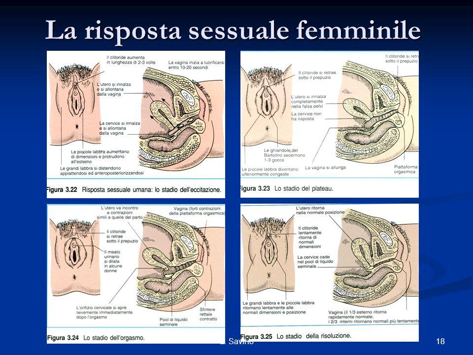 La risposta sessuale femminile