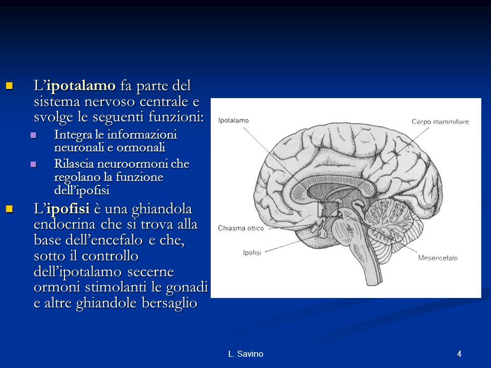 L'ipotalamo fa parte del sistema nervoso centrale e svolge le seguenti funzioni: