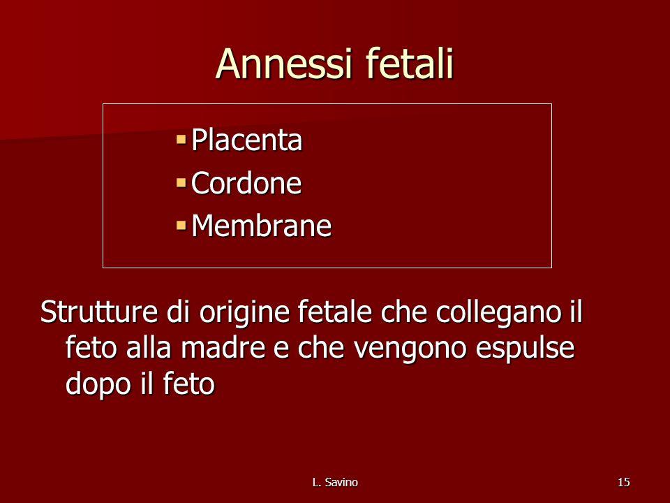 Annessi fetali Placenta Cordone Membrane