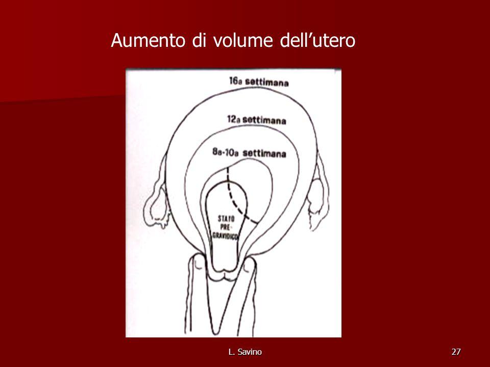 Aumento di volume dell'utero