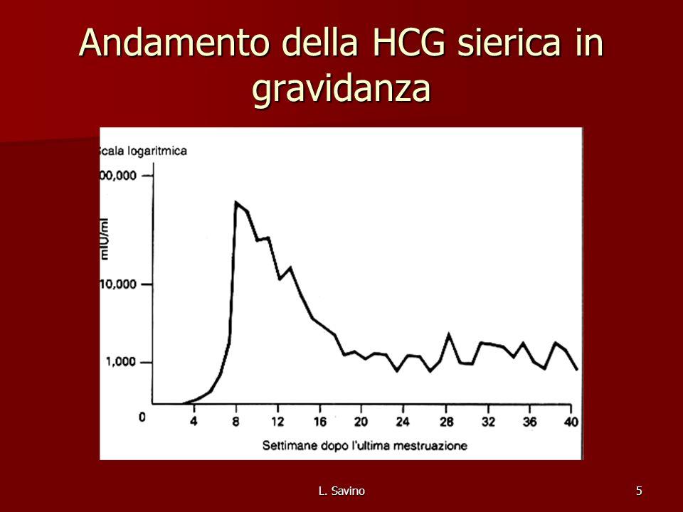 Andamento della HCG sierica in gravidanza