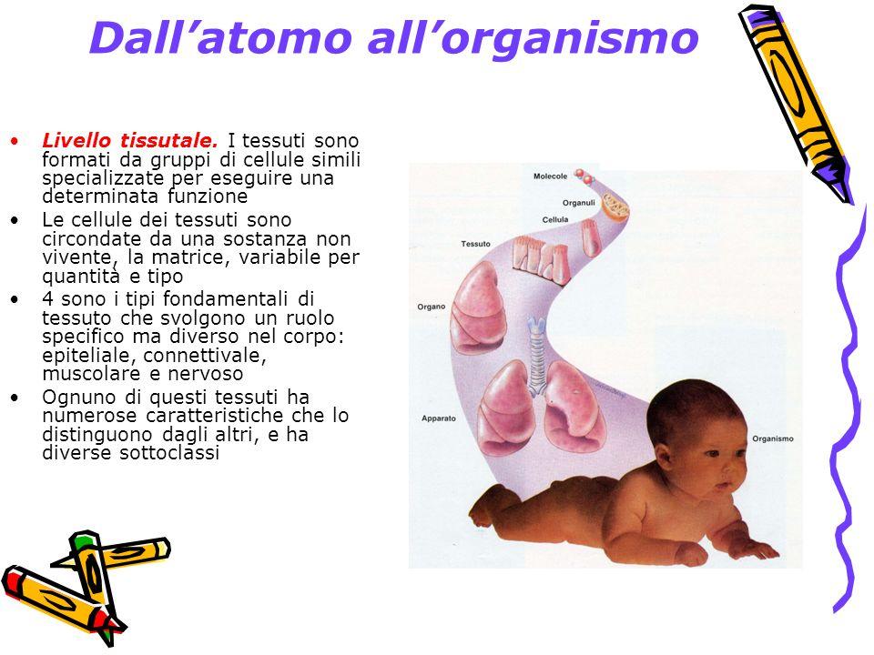 Dall'atomo all'organismo
