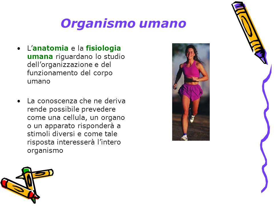 Organismo umano L'anatomia e la fisiologia umana riguardano lo studio dell'organizzazione e del funzionamento del corpo umano.