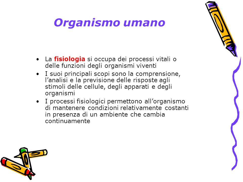 Organismo umano La fisiologia si occupa dei processi vitali o delle funzioni degli organismi viventi.