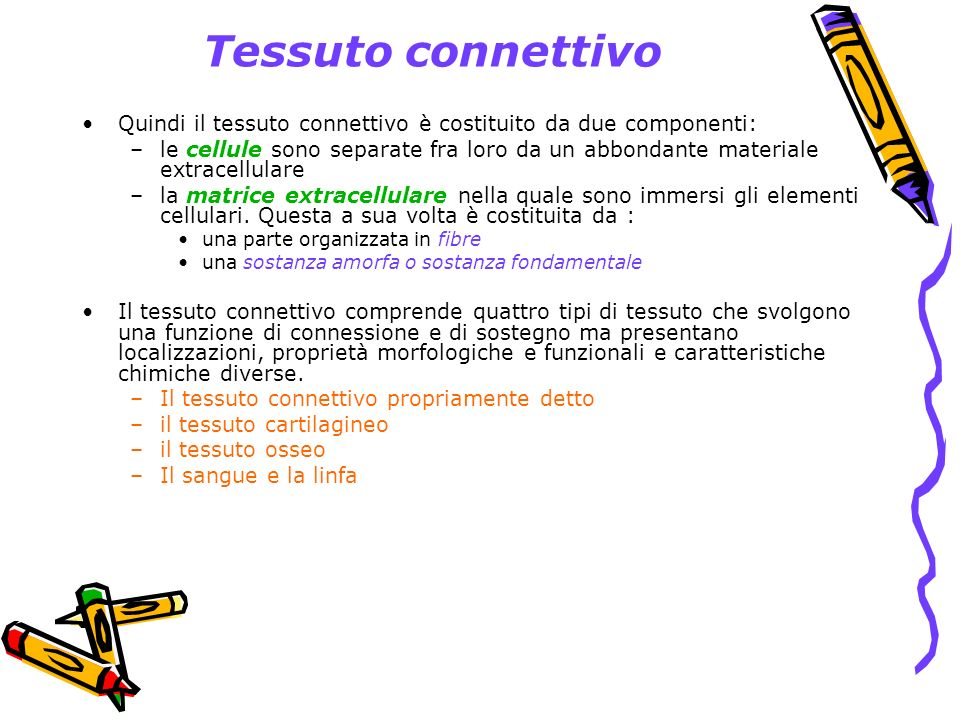 Tessuto connettivo Quindi il tessuto connettivo è costituito da due componenti: