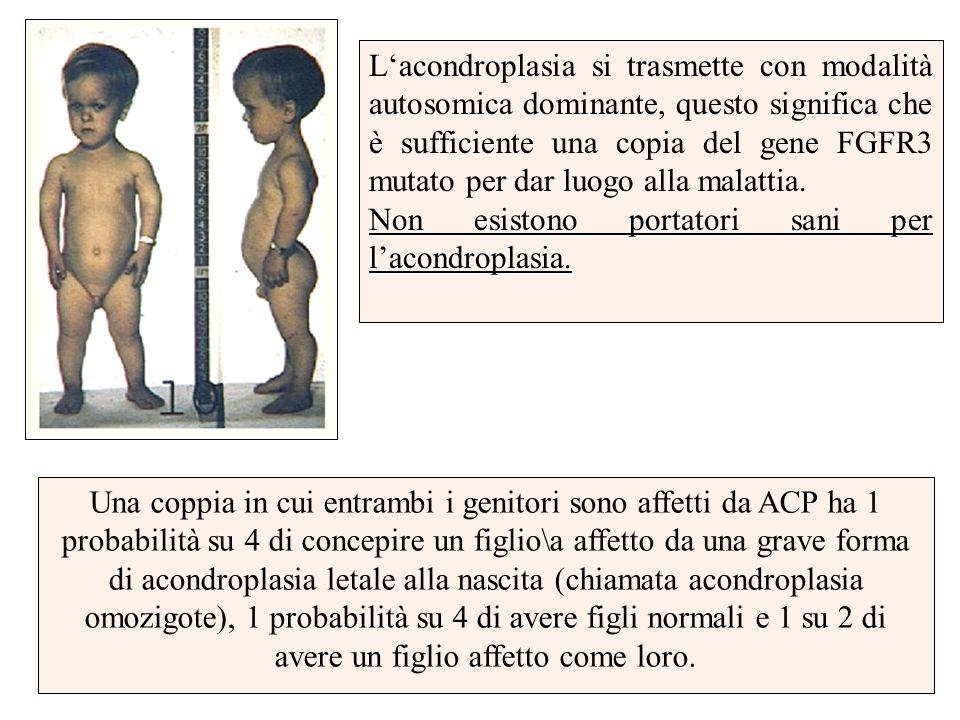 L'acondroplasia si trasmette con modalità autosomica dominante, questo significa che è sufficiente una copia del gene FGFR3 mutato per dar luogo alla malattia.