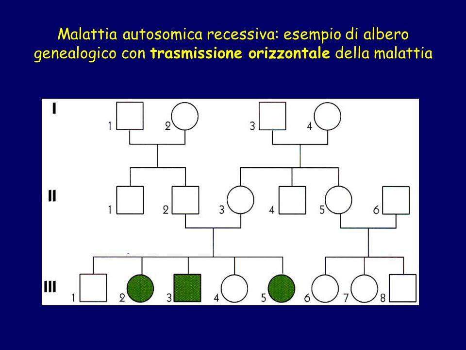 Malattia autosomica recessiva: esempio di albero genealogico con trasmissione orizzontale della malattia