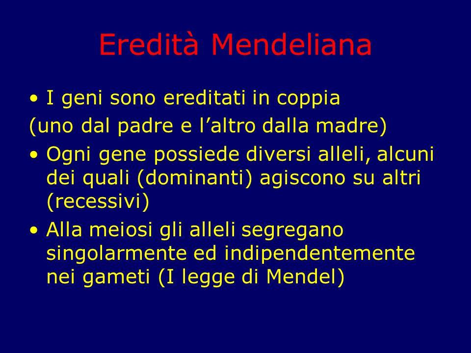 Eredità Mendeliana I geni sono ereditati in coppia