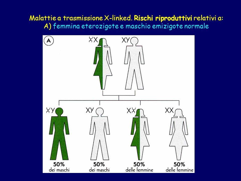 Malattie a trasmissione X-linked