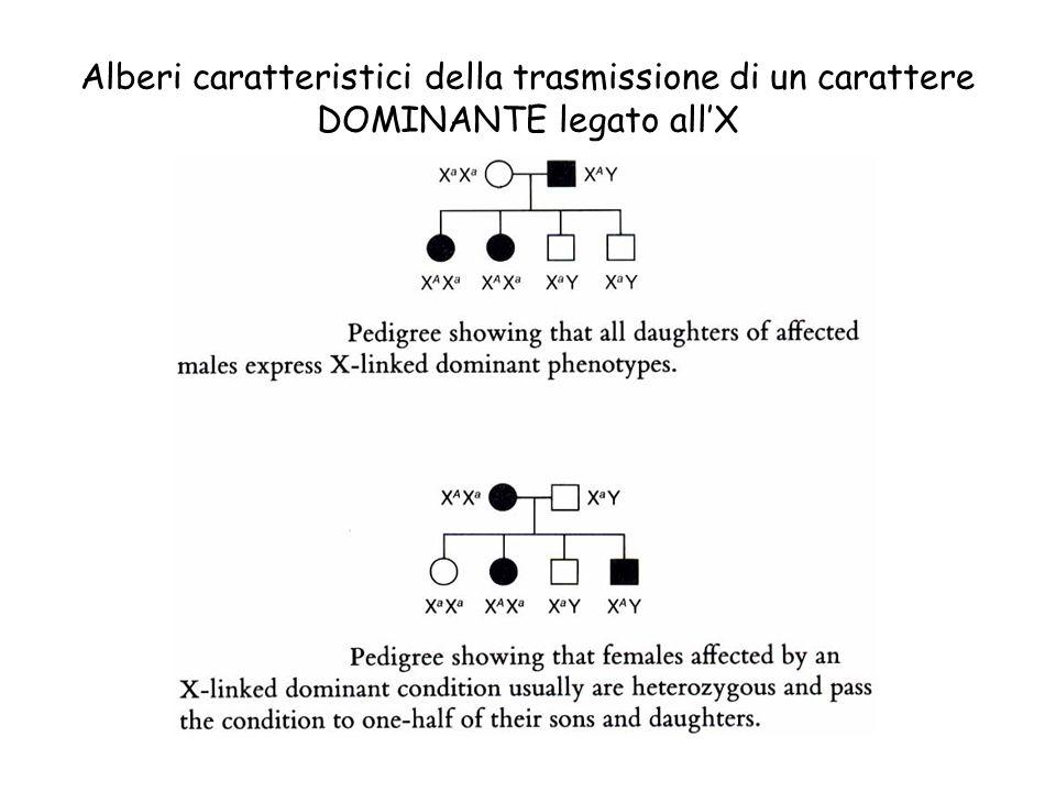 Alberi caratteristici della trasmissione di un carattere DOMINANTE legato all'X