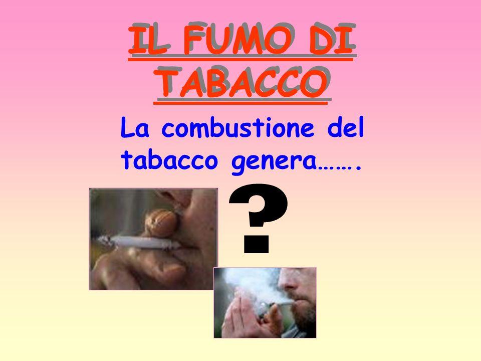 IL FUMO DI TABACCO La combustione del tabacco genera…….
