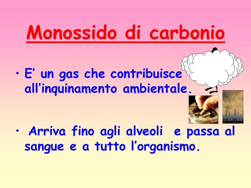 Monossido di carbonio E' un gas che contribuisce all'inquinamento ambientale.