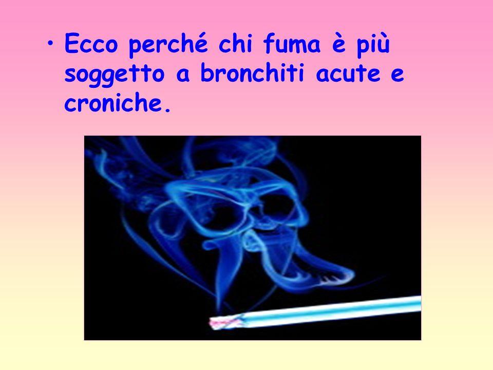 Ecco perché chi fuma è più soggetto a bronchiti acute e croniche.