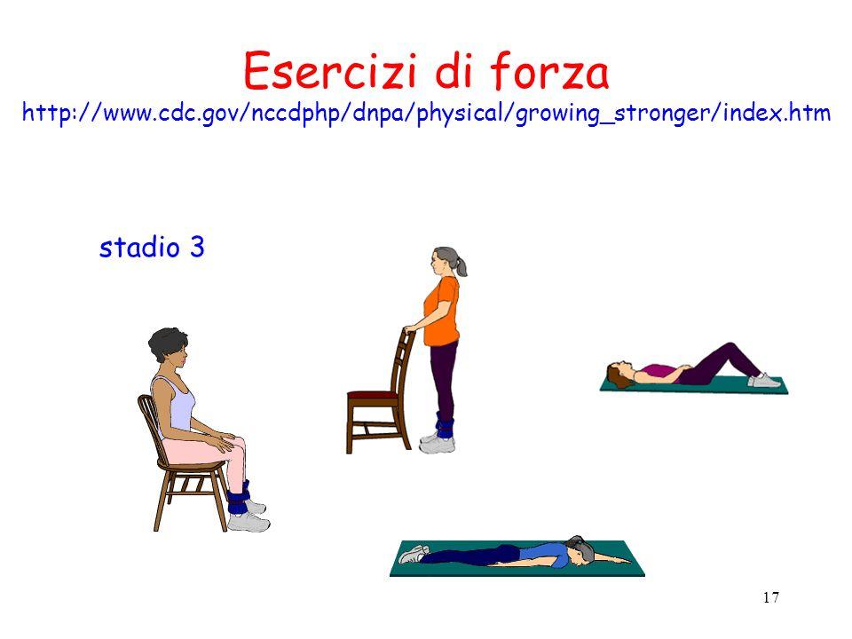 Esercizi di forza stadio 3