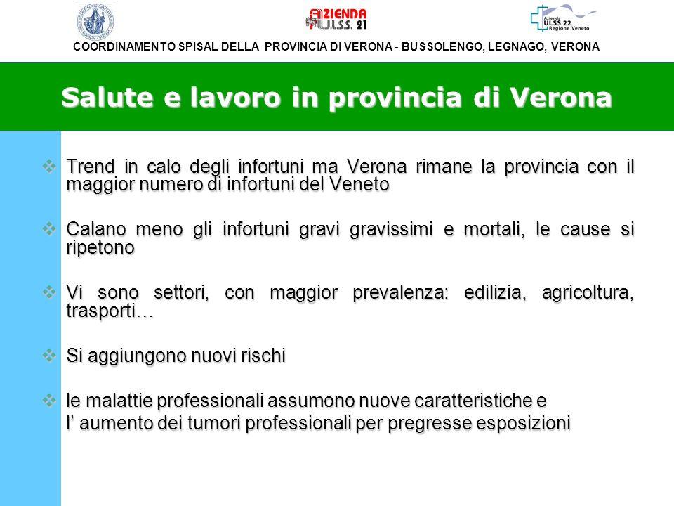 Salute e lavoro in provincia di Verona
