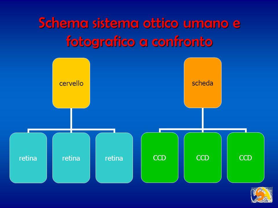 Schema sistema ottico umano e fotografico a confronto