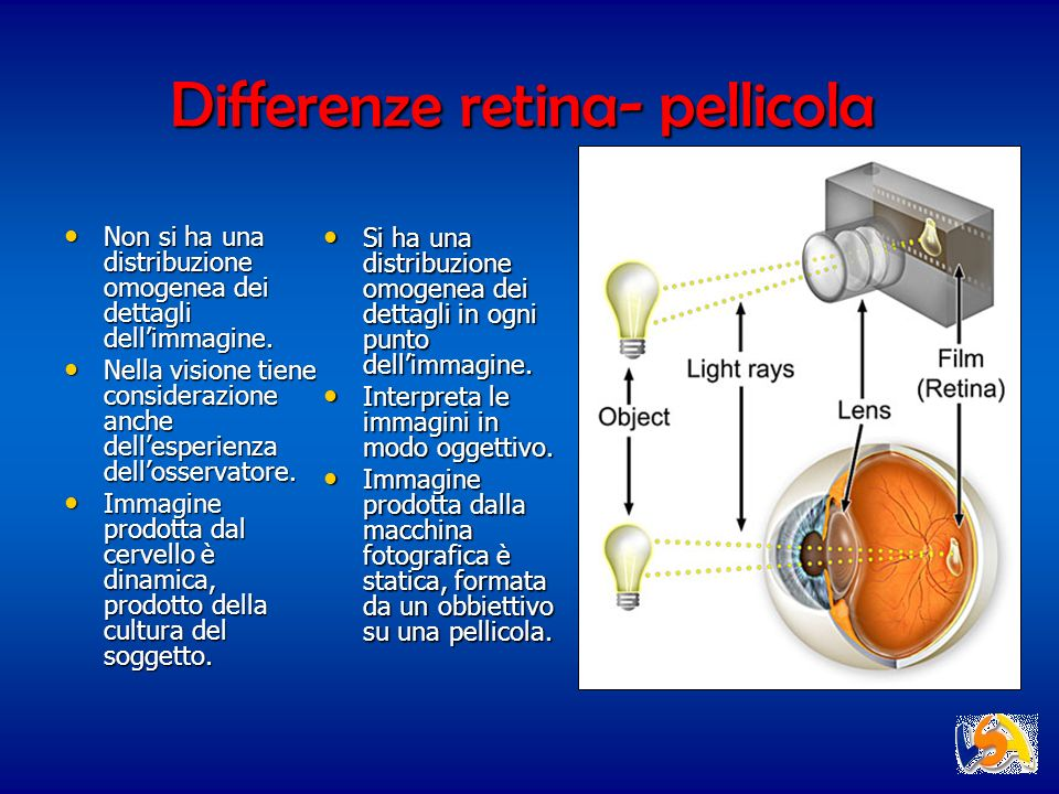 Differenze retina- pellicola