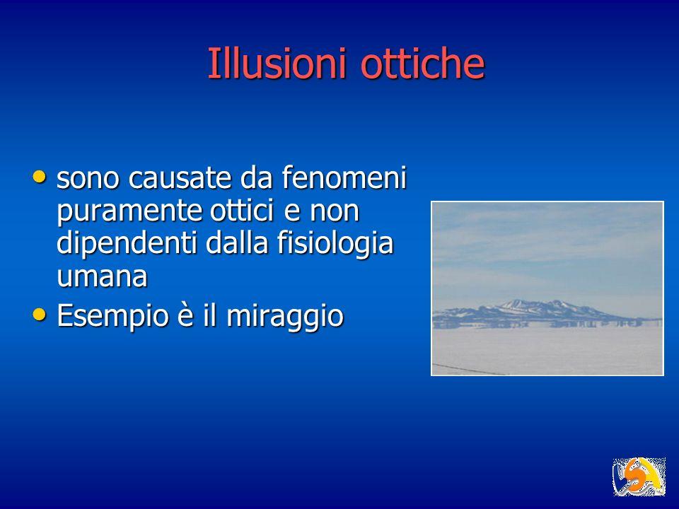 Illusioni ottiche sono causate da fenomeni puramente ottici e non dipendenti dalla fisiologia umana.