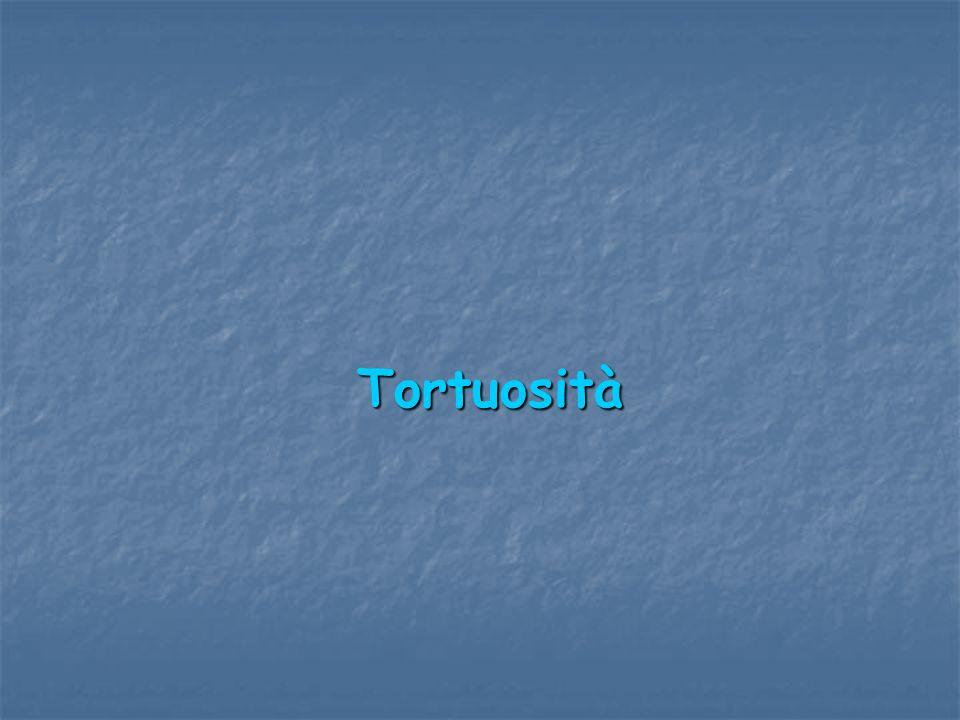 Tortuosità