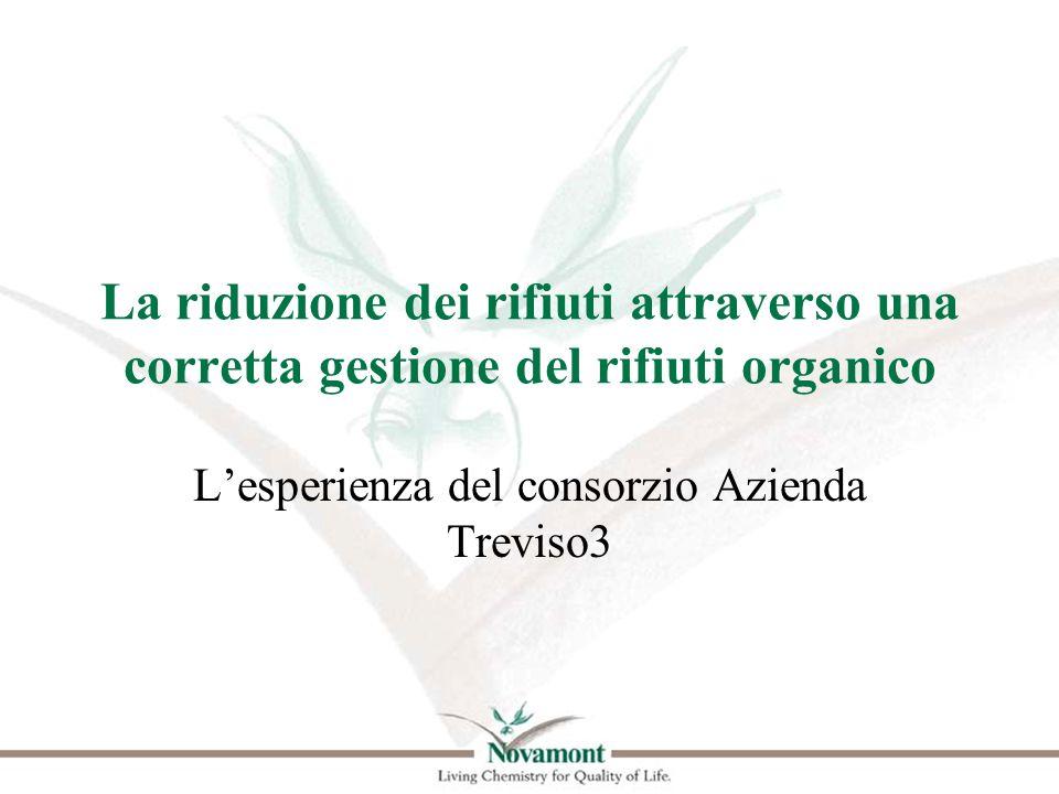 L'esperienza del consorzio Azienda Treviso3