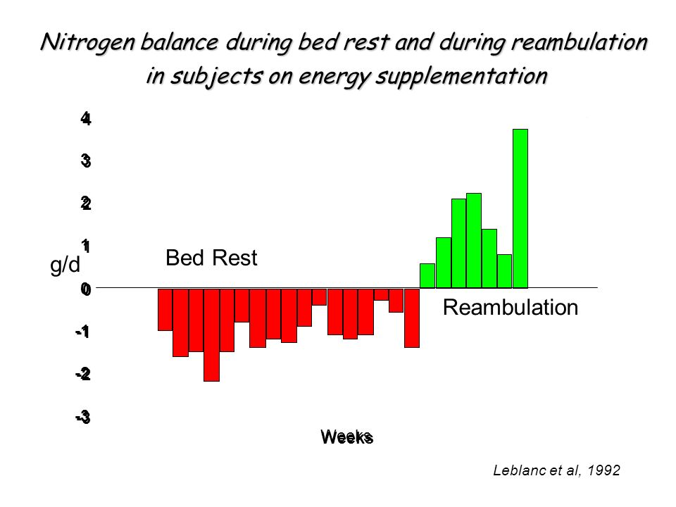 Nitrogen balance during bed rest and during reambulation