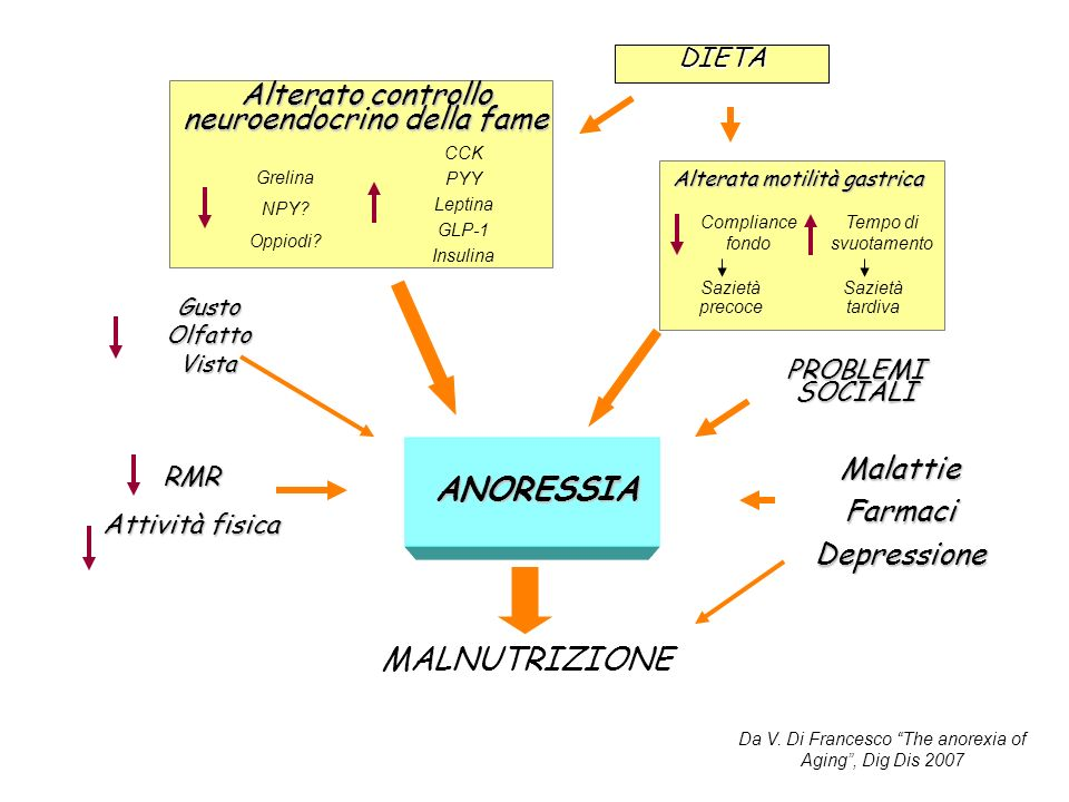 ANORESSIA MALNUTRIZIONE Alterato controllo neuroendocrino della fame