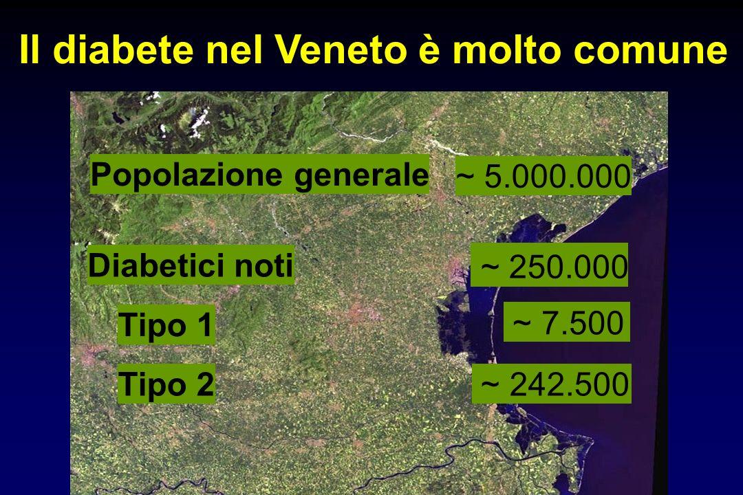 Il diabete nel Veneto è molto comune