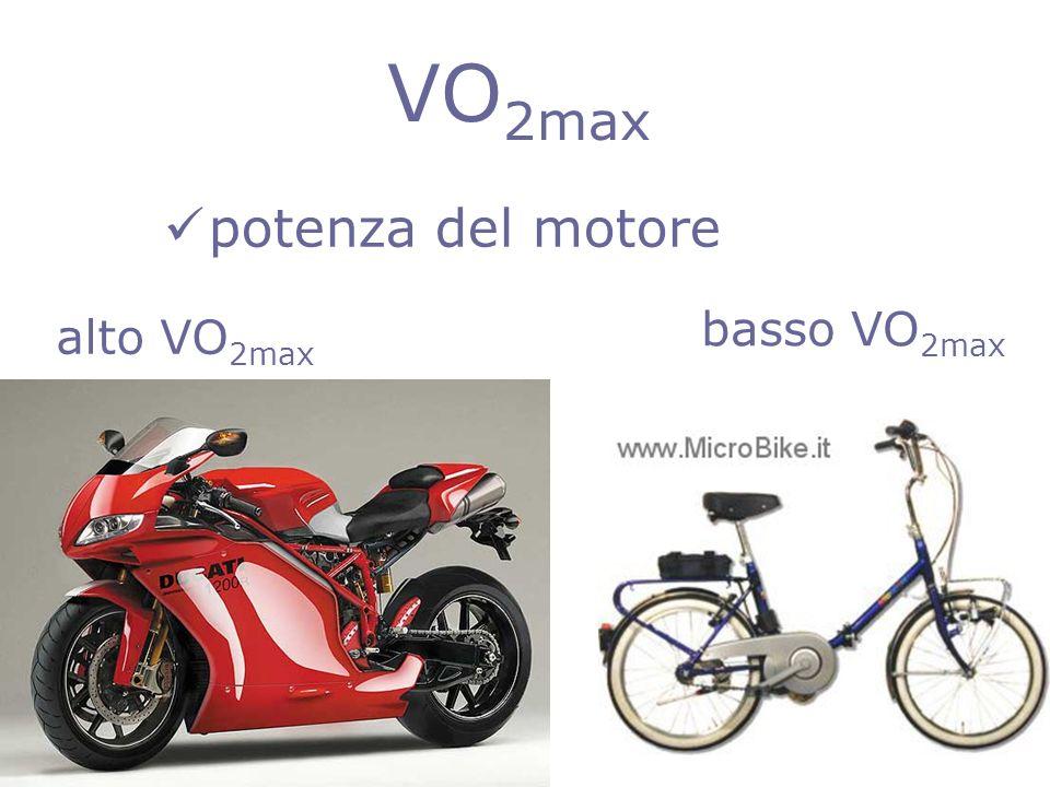 VO2max potenza del motore basso VO2max alto VO2max