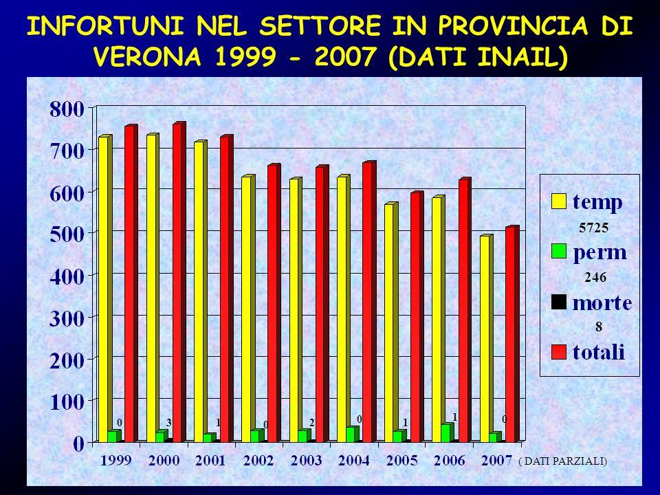 INFORTUNI NEL SETTORE IN PROVINCIA DI VERONA 1999 - 2007 (DATI INAIL)