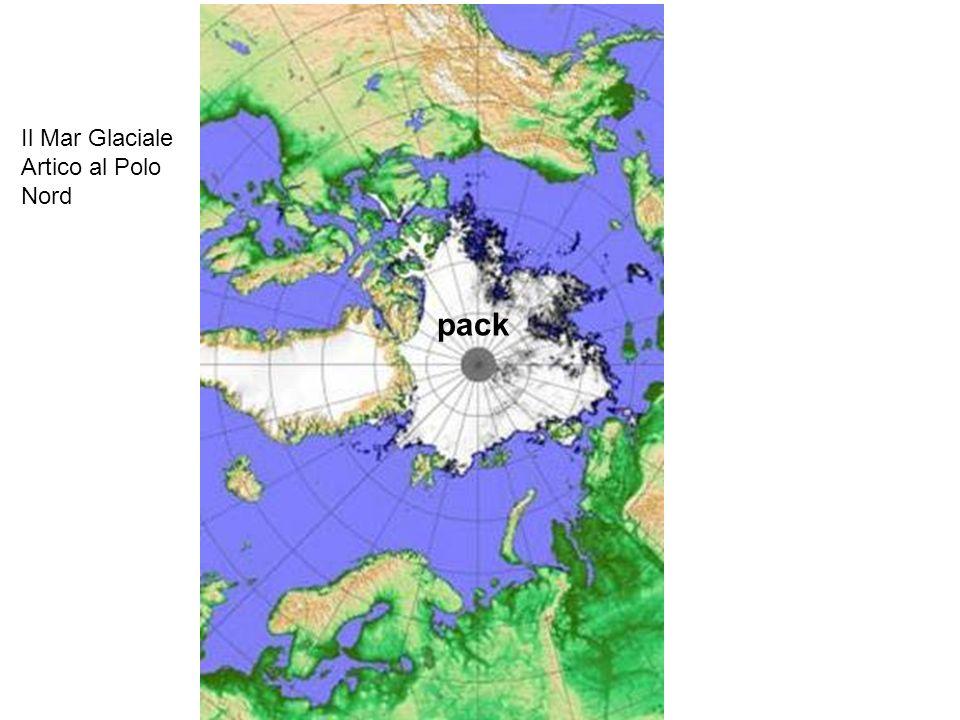 Il Mar Glaciale Artico al Polo Nord