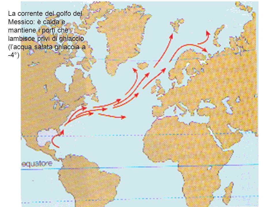 La corrente del golfo del Messico: è calda e mantiene i porti che lambisce privi di ghiaccio (l'acqua salata ghiaccia a