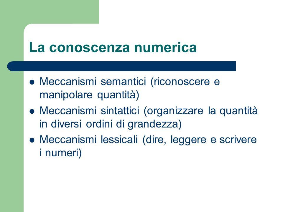 La conoscenza numerica