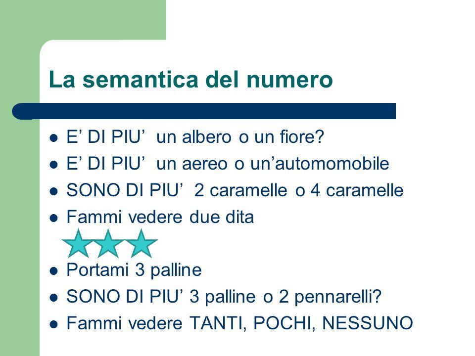 La semantica del numero