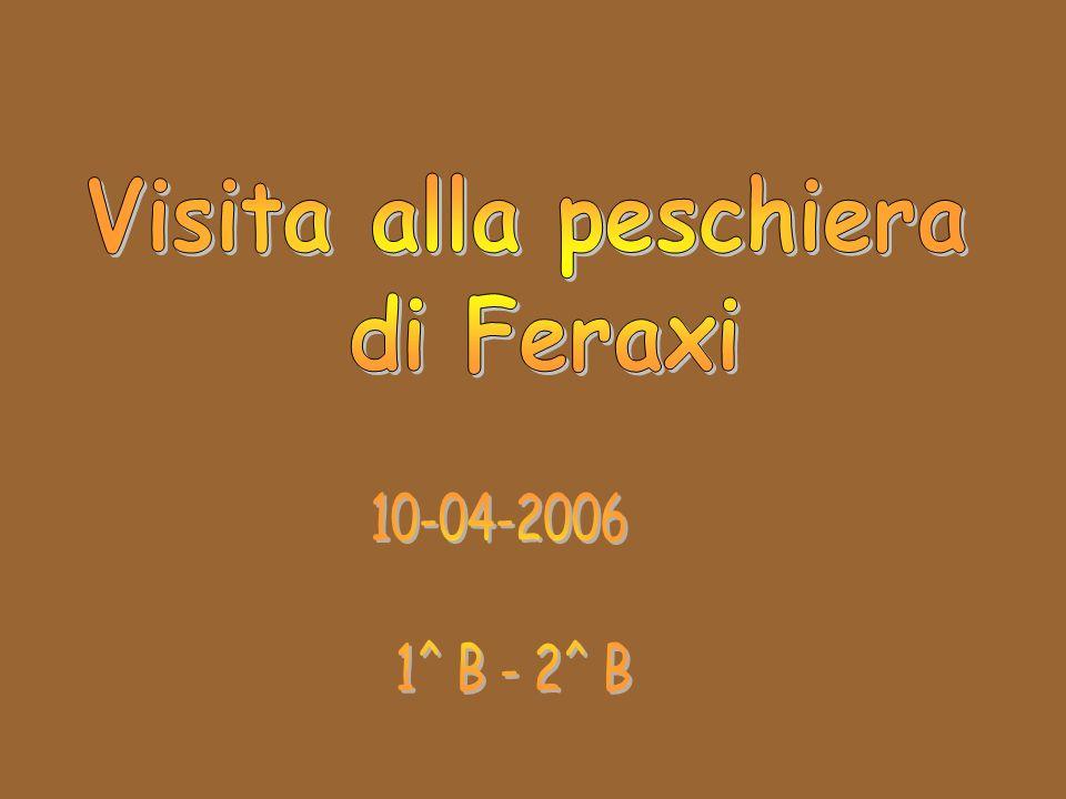 Visita alla peschiera di Feraxi 10-04-2006 1^ B - 2^ B