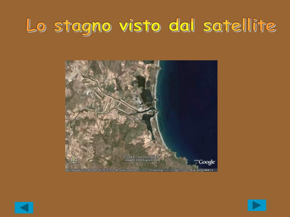 Lo stagno visto dal satellite
