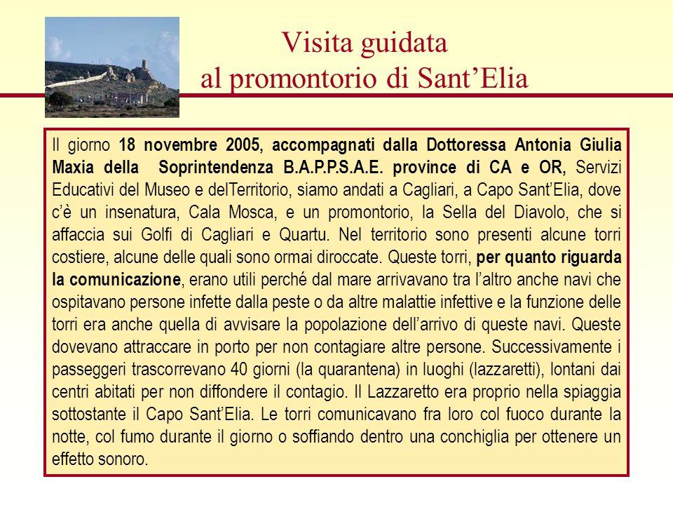 Visita guidata al promontorio di Sant'Elia