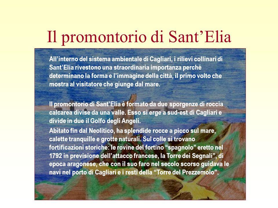 Il promontorio di Sant'Elia