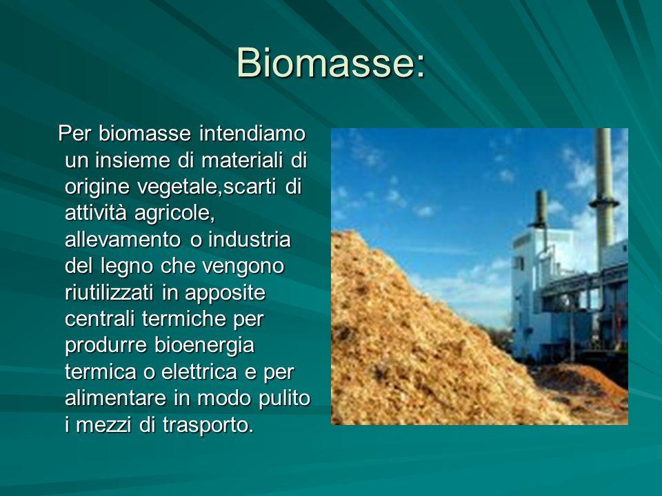 Biomasse: