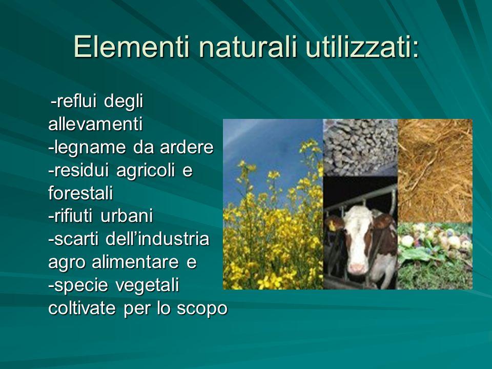 Elementi naturali utilizzati:
