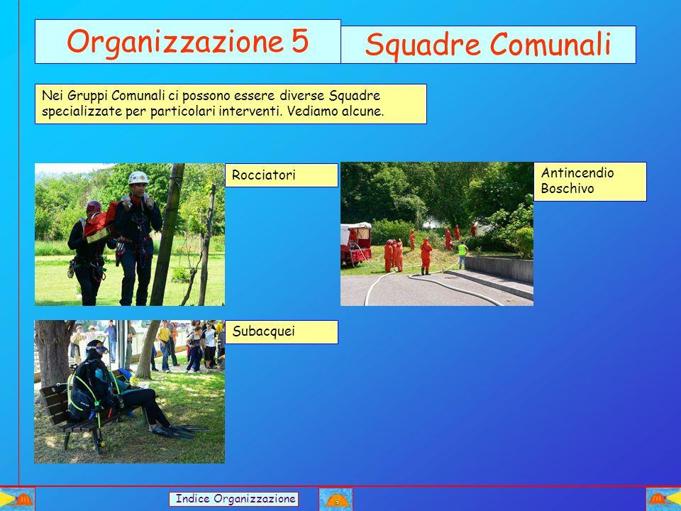 Organizzazione 5 Squadre Comunali