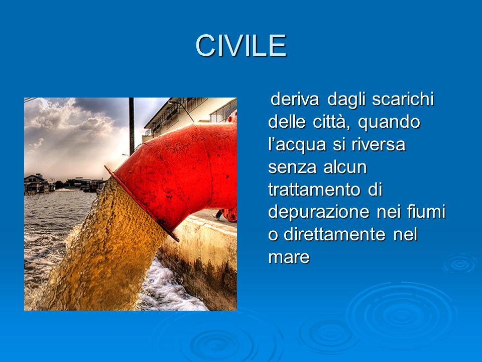 CIVILE deriva dagli scarichi delle città, quando l'acqua si riversa senza alcun trattamento di depurazione nei fiumi o direttamente nel mare.