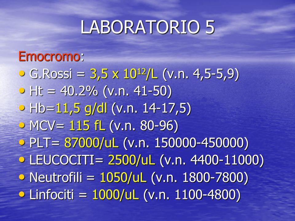 LABORATORIO 5 Emocromo: G.Rossi = 3,5 x 1012/L (v.n. 4,5-5,9)