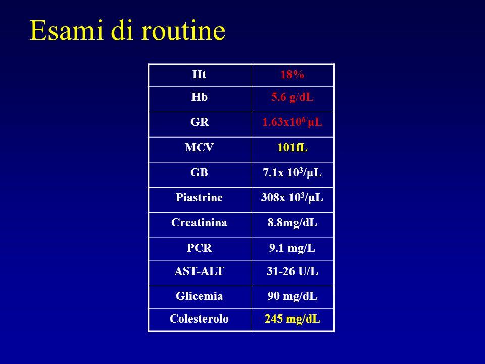 Esami di routine Ht 18% Hb 5.6 g/dL GR 1.63x106/μL MCV 101fL GB