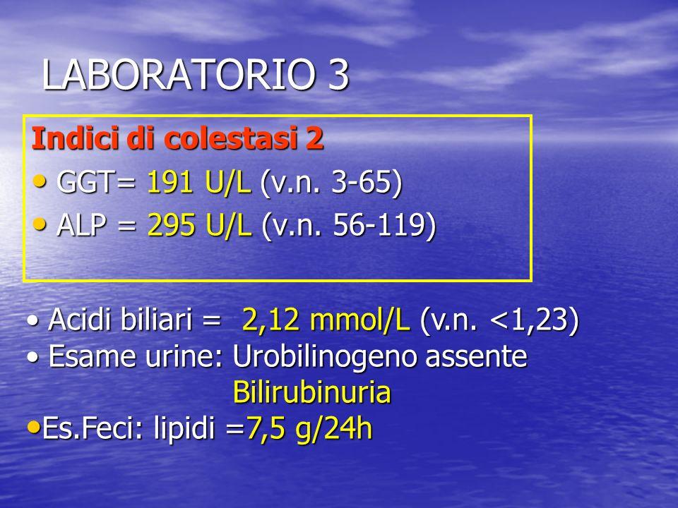 LABORATORIO 3 Indici di colestasi 2 GGT= 191 U/L (v.n. 3-65)